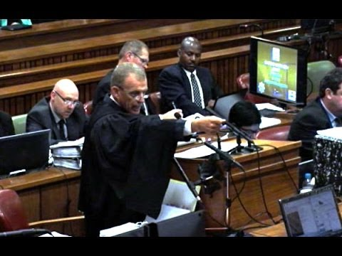 Pistorius Trial: The firearm was up but I wasn't aiming at the door – Pistorius