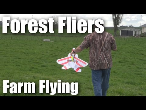 Forest Fliers of RC planes go to the farm