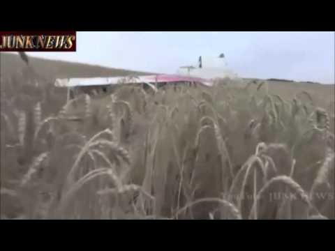 Malaysia Airlines Flight MH 17 Shot Down in Ukraine  Malaysia Airlines Plane Cra