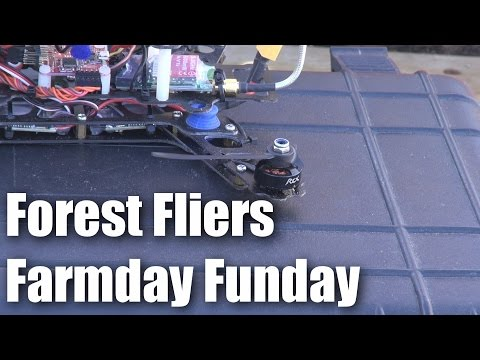 Forest Fliers of RC planes farmday funday