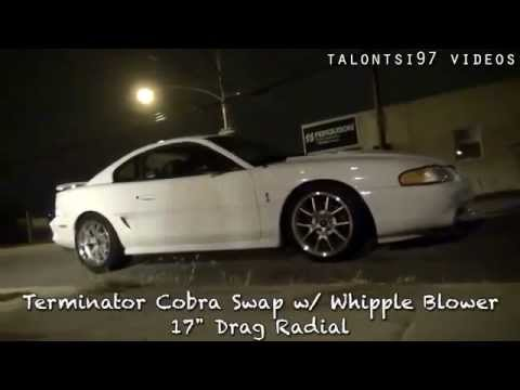 Hellion Turbo Mustang vs  Whipple Cobra Dig Race ! ByKayseri !