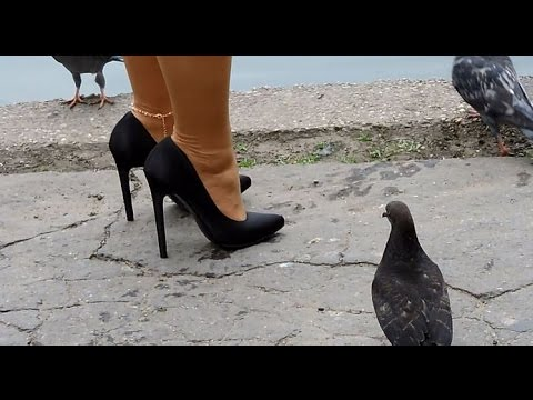 Seesighting 5 walking and bird feeding in 5,25 inch Pleaser high heels
